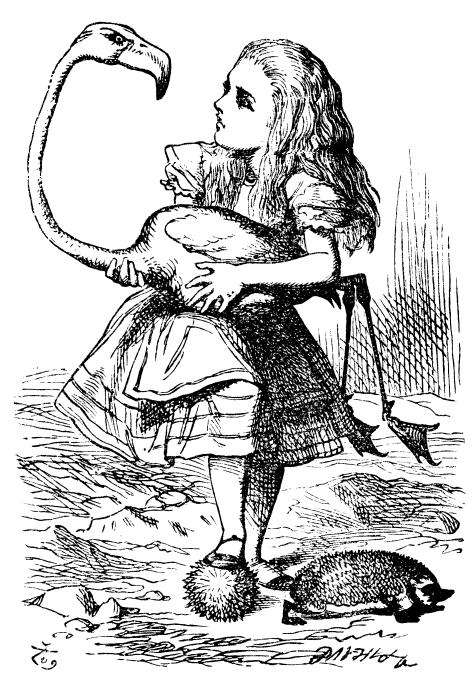 Free bilingual book Spanish / English, Alice\'s Adventures in ...